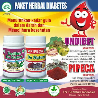 obat alami untuk penyakit kencing manis