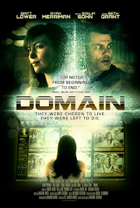 Domain Poster