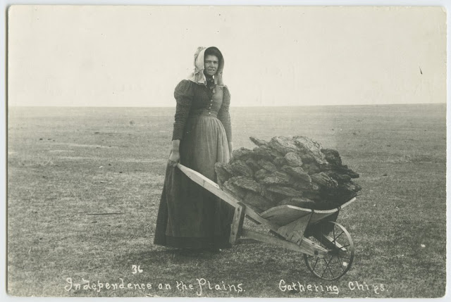 Pioneer woman gathering buffalo chips for the fire. Frighten the Horses. marchmatron.com