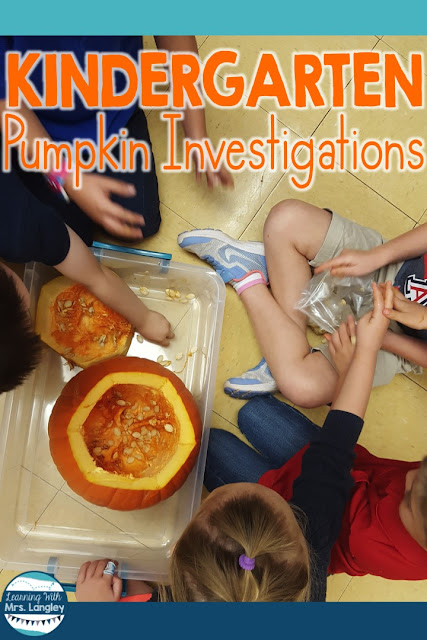 Want to include more science activities in your unit plans this fall? This post reviews how I incorporate hands on learning and highlights our life cycle of pumpkin unit that we do each fall. Student friendly journals, easy to follow lesson plans, and fun activities are all included in this unit.#pumpkins #pumpkins #lifecycles #kindergarten#science #teacherspayteachers