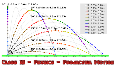 CBSE Class 11 - Physics - Projectile Motion - Assignment (#cbseNotes)