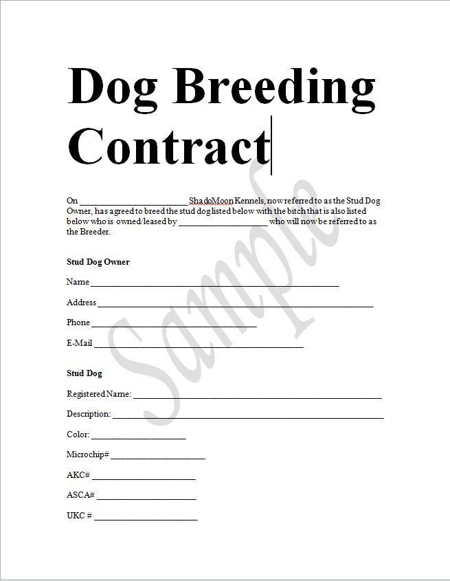 Sample dog breeding contract in word to download sample for Dog breeding contract template