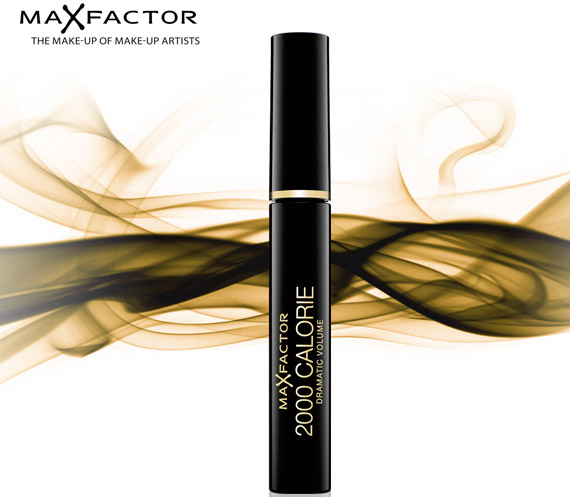 Final version of max factor