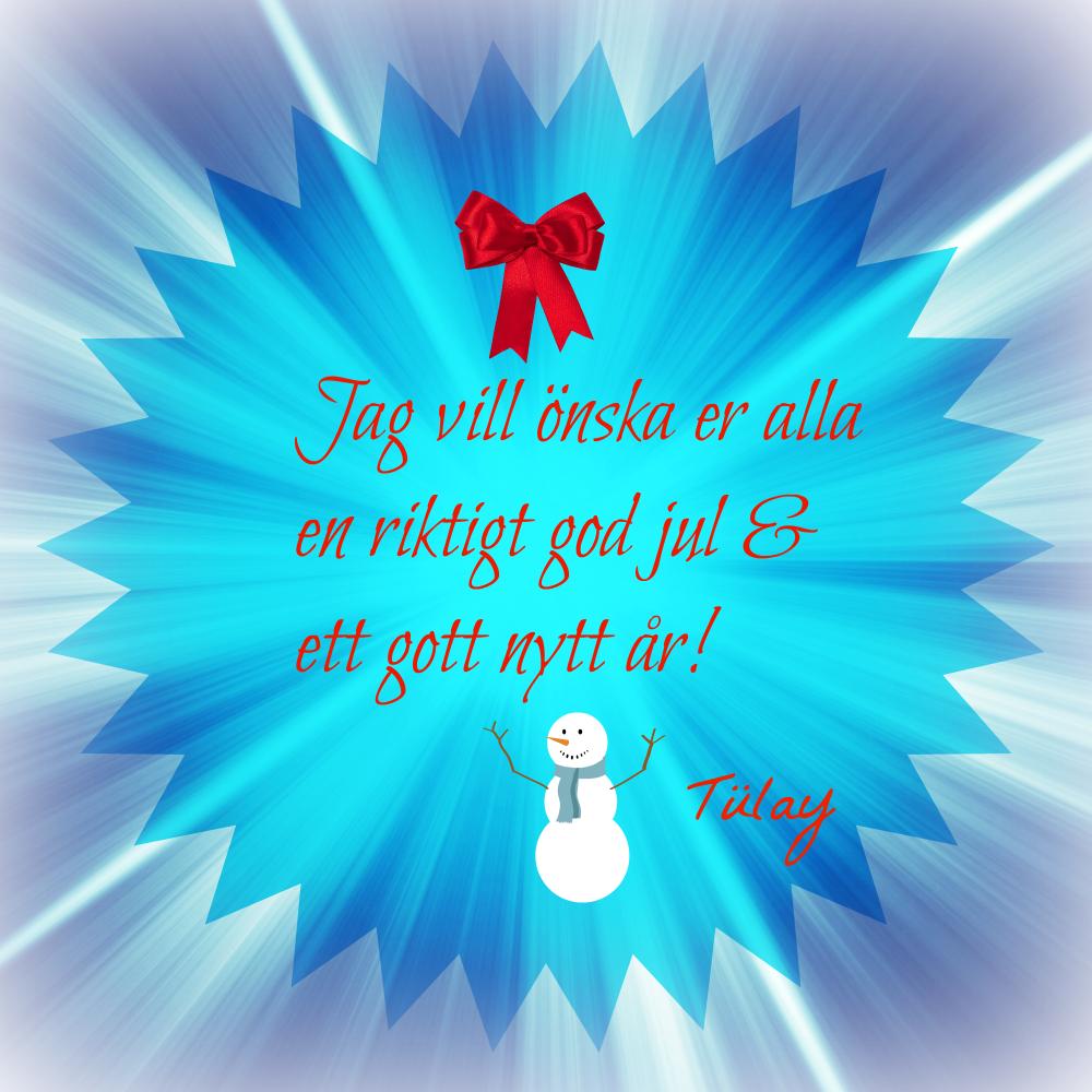 rolig text gott nytt år Tülays IKT sida: God Jul och Gott Nytt År! rolig text gott nytt år