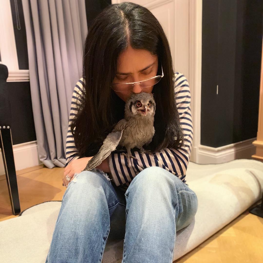 Salma Hayek Shares Adorable Photos of her New Pet Owl