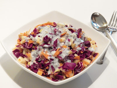 z plate of Red Cabbage Slaw with Yogurt Poppy Seed Dressing