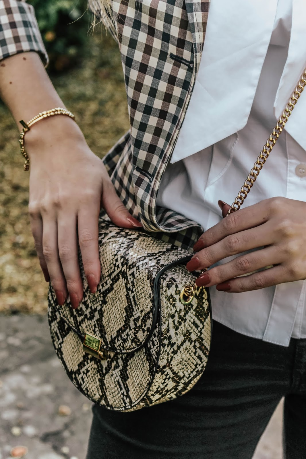 Mango Circle Snakeskin Bag