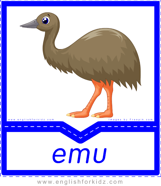 Emu - printable Australian animals flashcards for English learners