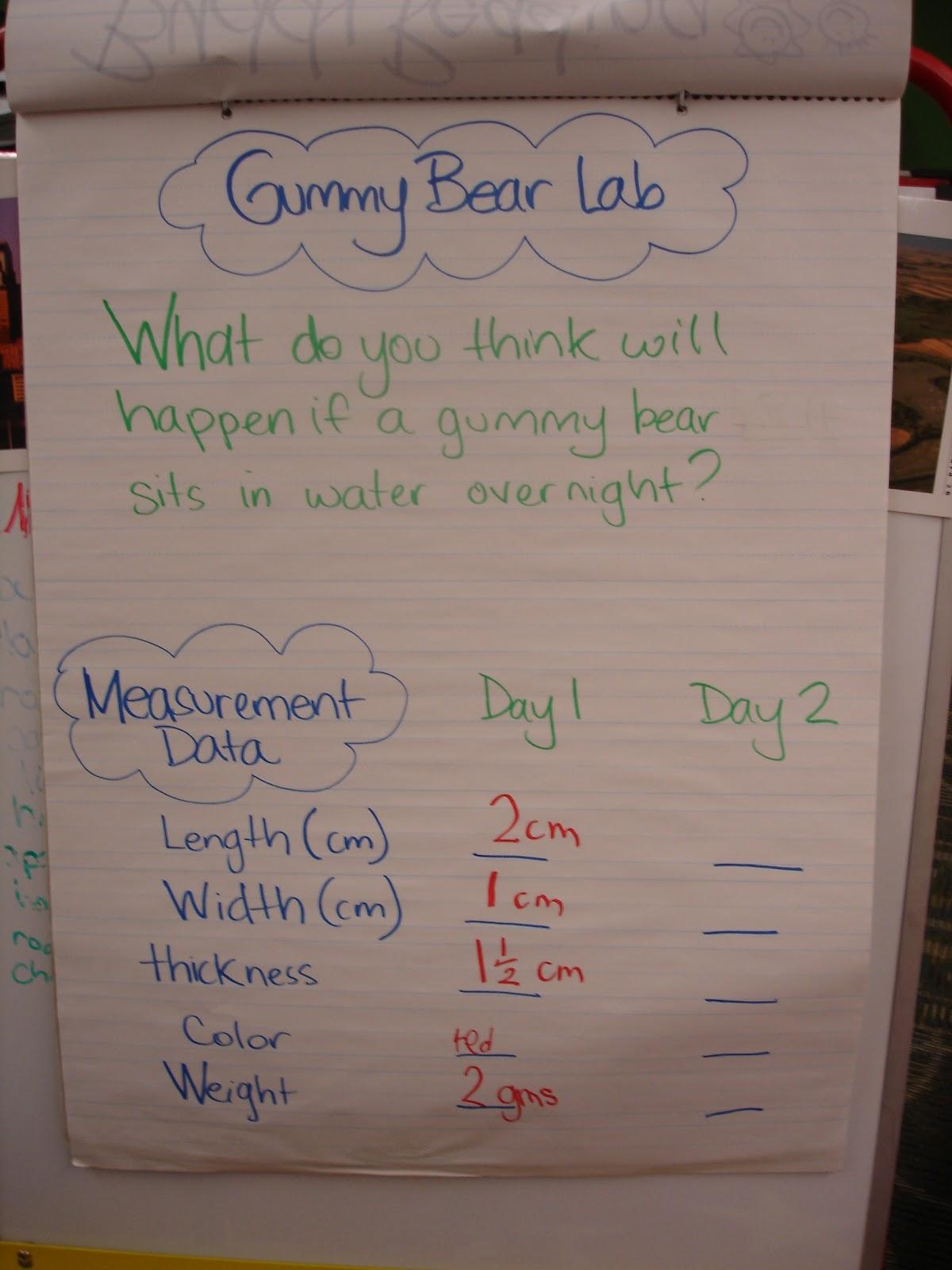 Hanlen S Happenings Gummy Bear Lab
