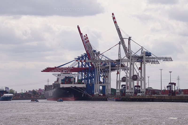 Beautiful Hamburg Harbour in summer // Hamburger Hafen Hafenrundfahrt Containerschiff