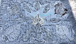 Wet cyanotype_Sue Reno_Image 545