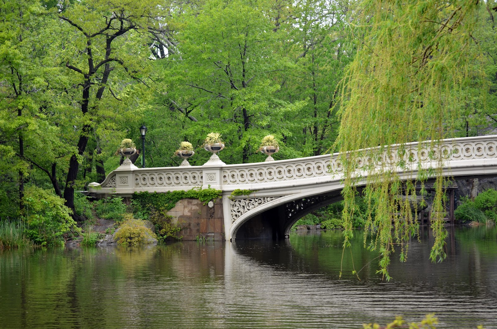Good Afternoon Cute Wallpaper Msimj Excursions Central Park Fao Schwarz And American