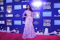 SIIMA 2017 Abu Dhabi Press Meet Stills  0013.JPG