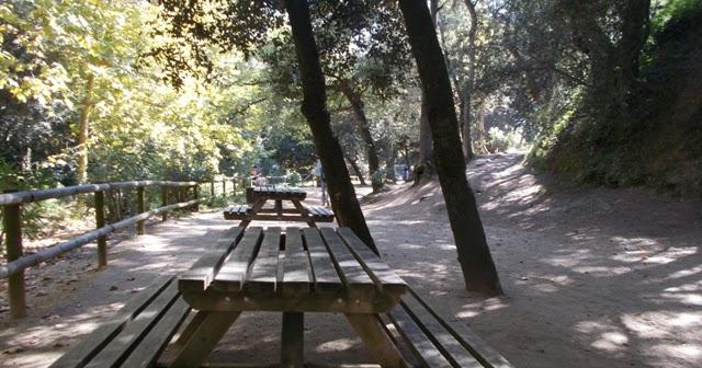 SOM DE PÍCNIC: Àrea de pícnic del Parc de la Llorita, Sant Andreu de Llavaneres, Maresme