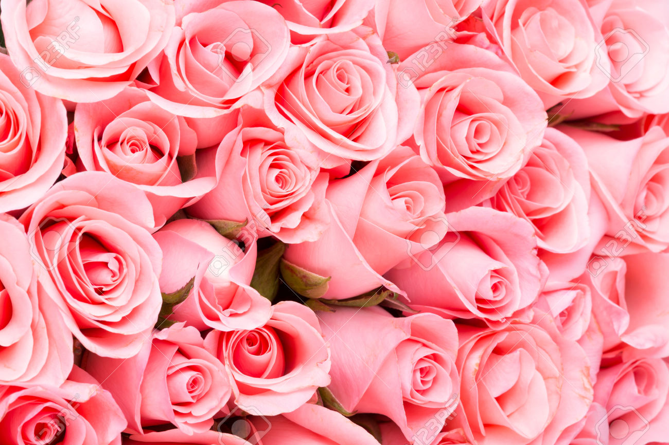 Floral events what do pink roses mean what do pink roses mean in flowers pink is the color of joy and youthfulness its a way to say i admire you or i appreciate you good for girls biocorpaavc Images