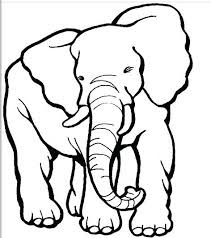 Elephant Coloring Page Free Image