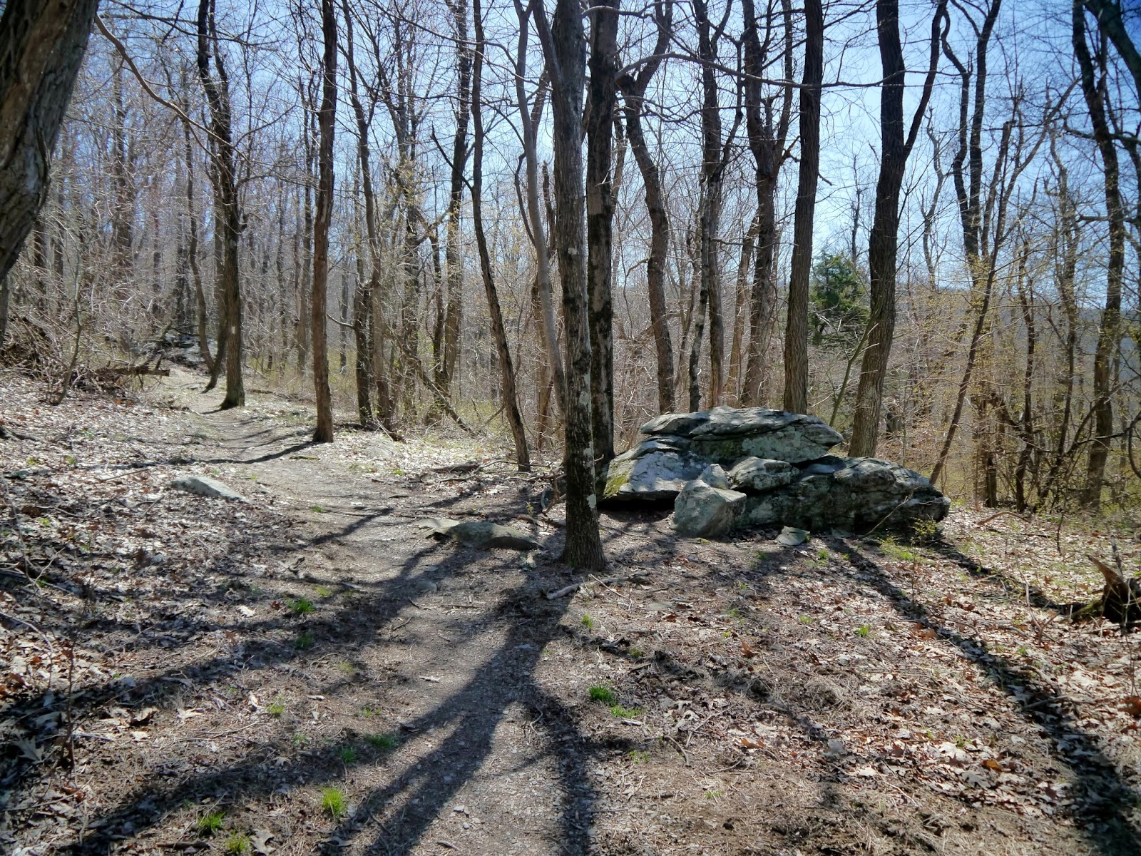 American Travel Journal Doyles River Cabin Trailhead To