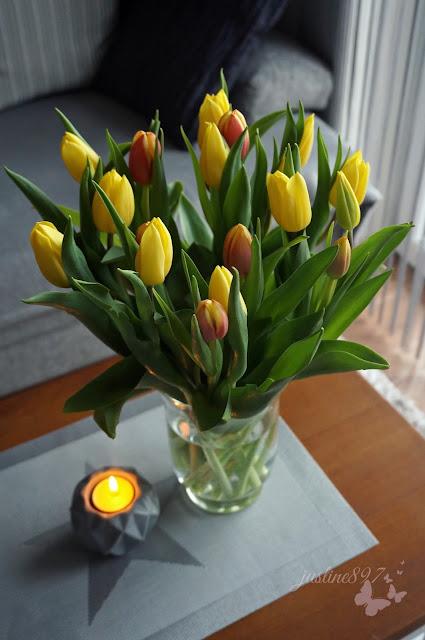 zółte tulipany wiosna wielkanoc