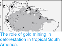 https://sciencythoughts.blogspot.com/2015/02/the-role-of-gold-mining-in.html
