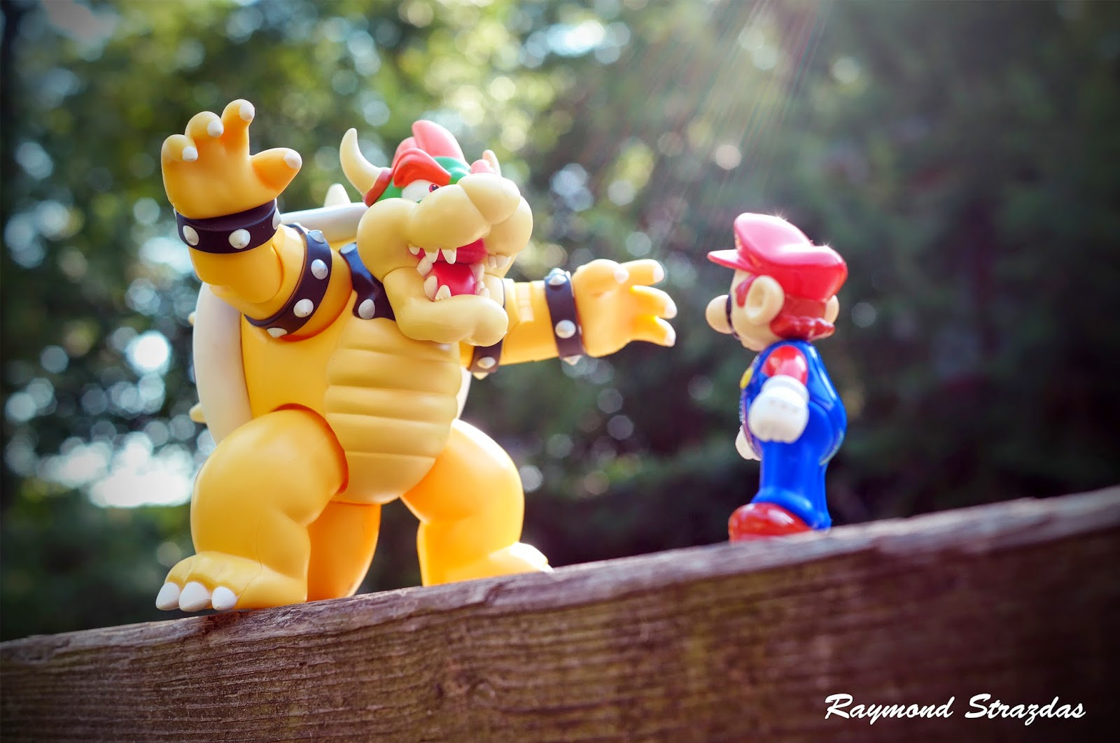 Mario vs. Bowser battle photo by raystrazdas