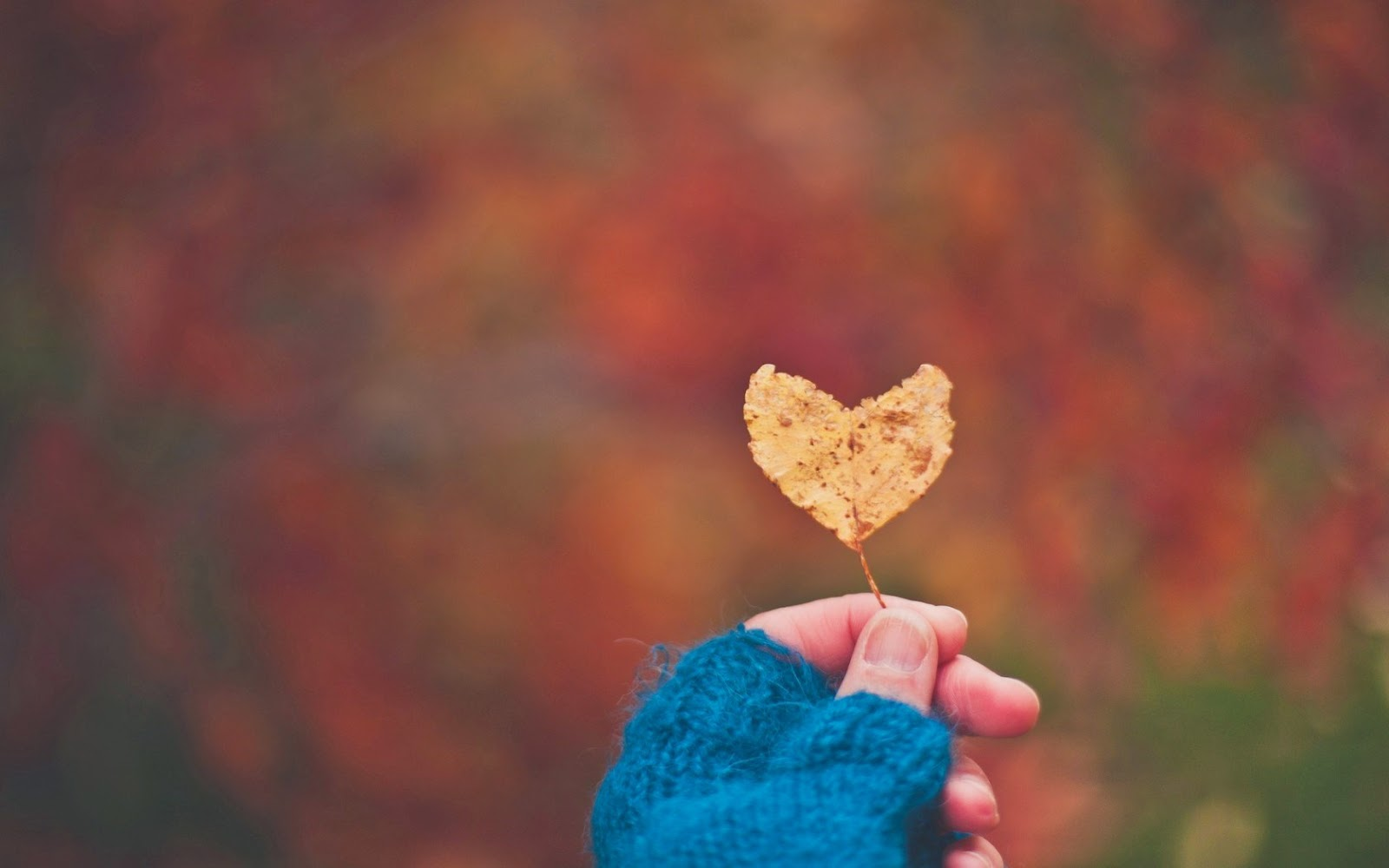 قلوب حب باليد