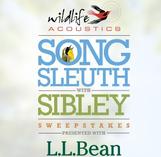 L.L.Bean Song Sleuth with Sibley Sweepstakes