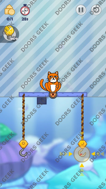 Hello Cats Level 37 Solution, Cheats, Walkthrough 3 Stars for Android and iOS