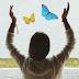As 5 lições que aprendi com as borboletas