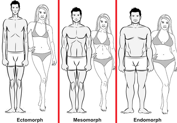 Understanding Your Body Type for Ultimate Fat Loss and Muscle Building