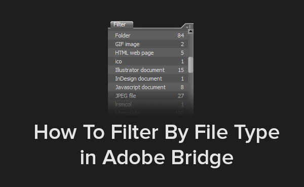 How To Filter By File Type in Adobe Bridge