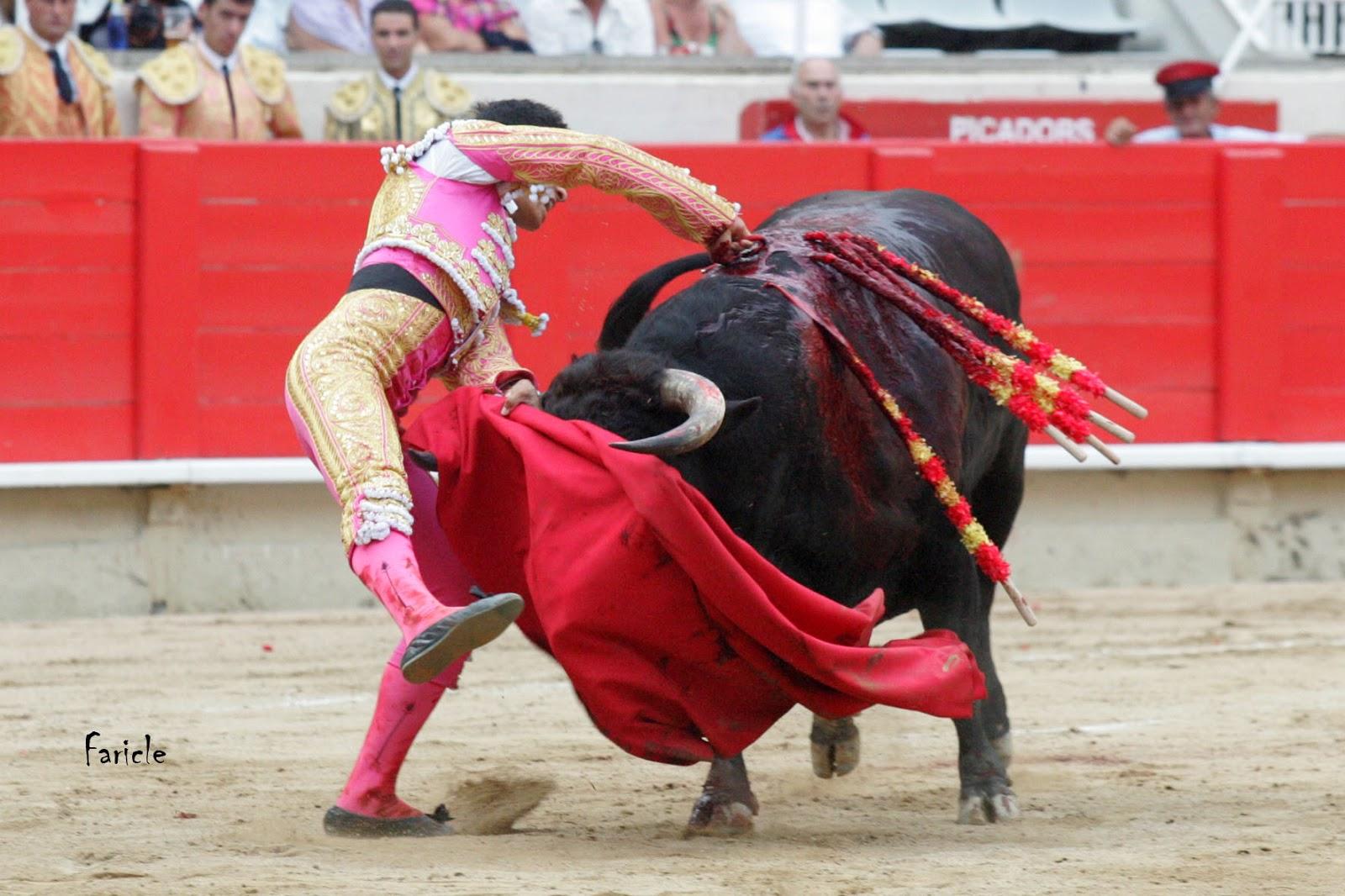 Fotos de toros de corralejas e27e228a28a