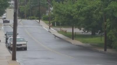 fox running down Wachusett St