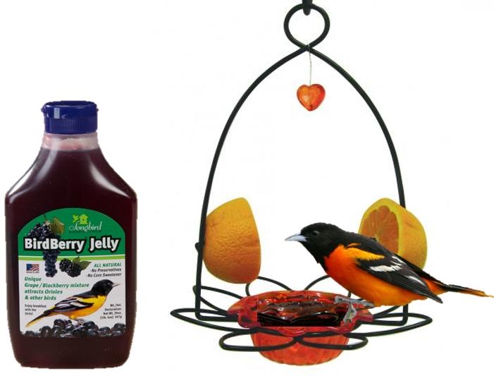 Wild Birds Unlimited Oriole Jelly Feeder