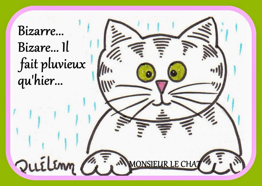 dessin de chat, humour, Monsieur LE CHAT