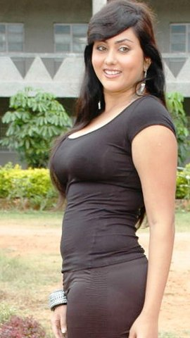 Tamil%2BActress%2BNamitha%2BHot%2BWallpapers2