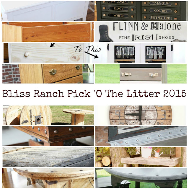 2015 Project Before and Afters, Bliss-Ranch.com