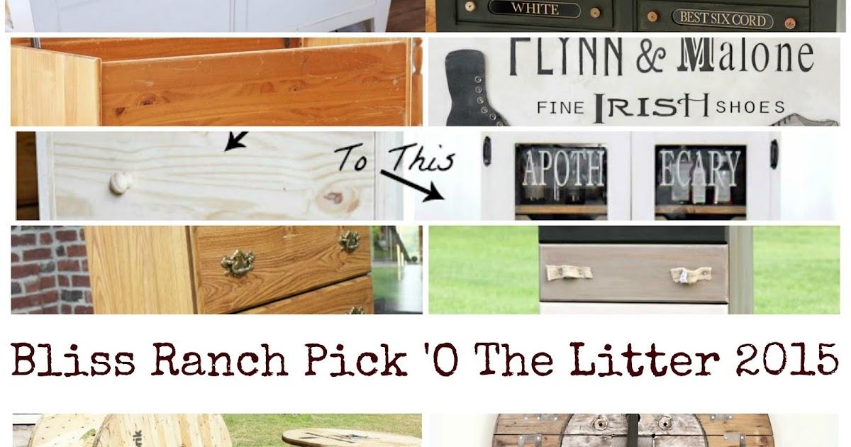 Bliss Ranch Bliss Ranch Pick O The Litter Project Recap