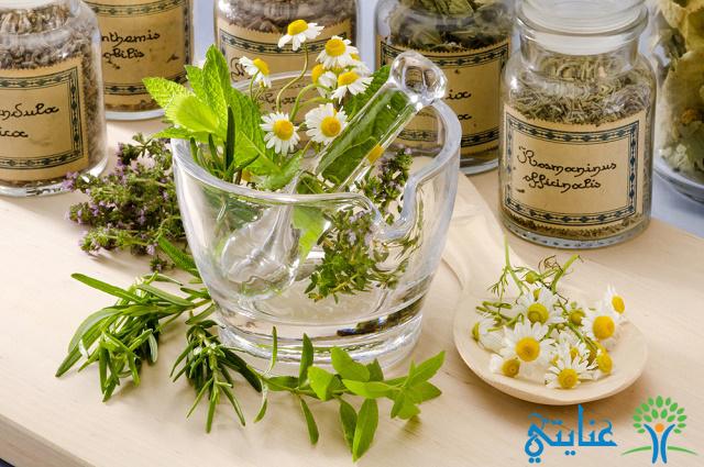 العلاج-بالأعشاب