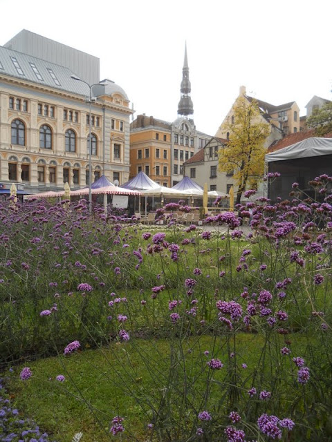 3 days in Latvia: Wildflowers in Riga