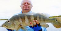História de Pescador, Pescaria, Peixes, No de Pesca,  Tucunaré-azul
