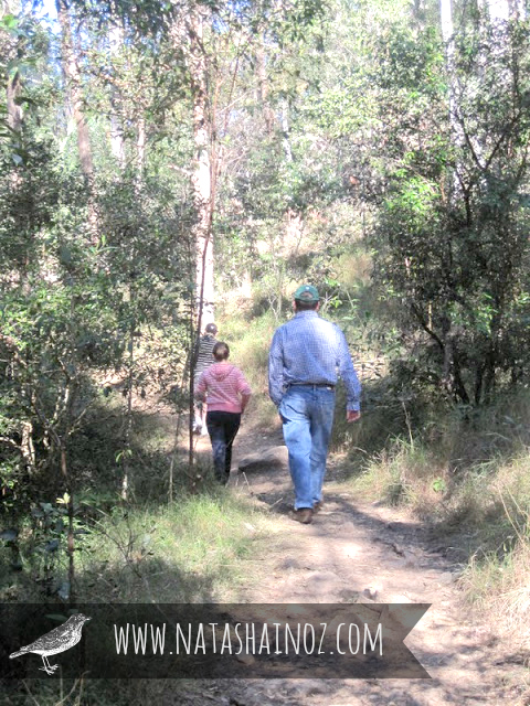 Words of Wisdom, Tuesday Tune, Natasha in Oz, Garden Path, Hiking, bush walk
