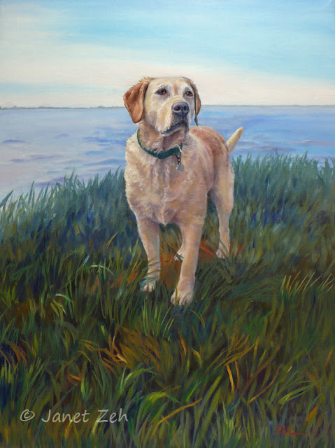 A yellow labrador retriever stands by the sea