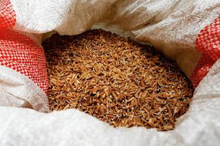 manfaat beras merah untuk kesehatan tubuh dan kulit