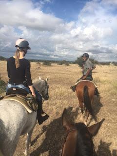 botswana, ratsastussafari, riitta reissaa, savanni