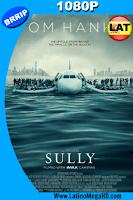 Sully, Hazaña en el Hudson (2016) Latino HD 1080P - 2016