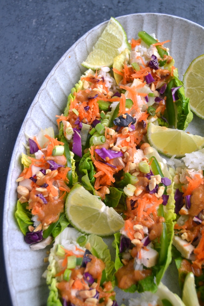 Peanut Chicken Lettuce Wraps are loaded with thinly sliced grilled chicken, red cabbage, carrots, jasmine rice, green onions, peanuts, lime juice and a flavorful peanut sauce! www.nutritionistreviews.com