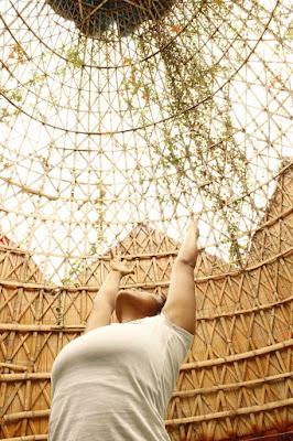 El Yoga nos muestra el camino y nos guía para que demos aquellos pequeños pasos en busca de nuestra felicidad; nos invita a hacerle pequeños ajustes a nuestros días, nos invita a pensar