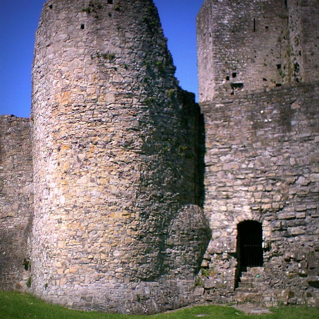 Trim Castle, Meath, Ireland