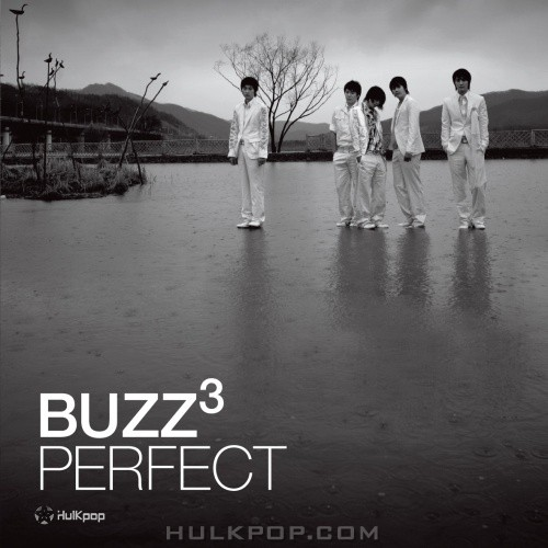 BUZZ – Vol.3 Perfect (APE)