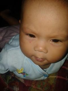 Video Bayi Lucu dan Imut
